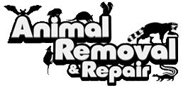 Wildlife Removal & Exclusion   Hoover & Mobile, AL   Animal Removal & Repair